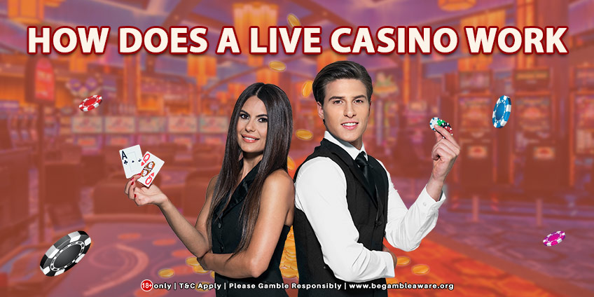 How Does A Live Casino Work?
